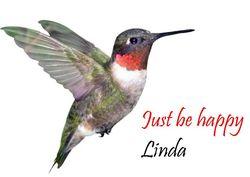 Hummingbird-sig