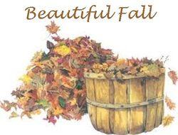 Fall - Sig