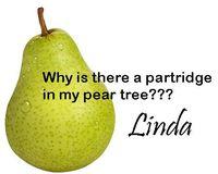 Pear-sig