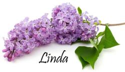 Lilac sig