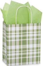 Green plaid bag